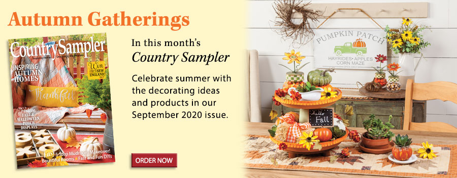 Celebrate summer with the decorating ideas and products in our September 2020 issue.